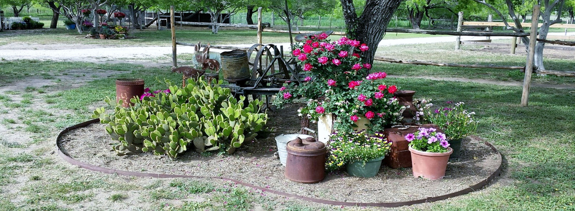 Jamie's Ranch offers a variety of activities in a beautiful ranch setting.